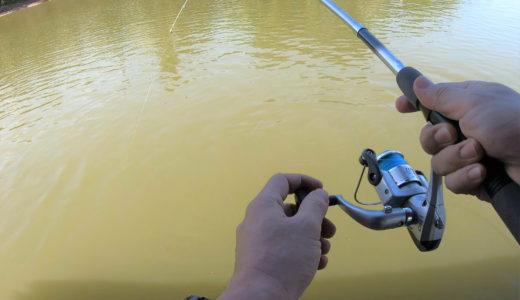 久しぶりの魚釣りでリラックス in dPond Family Fun Fishing