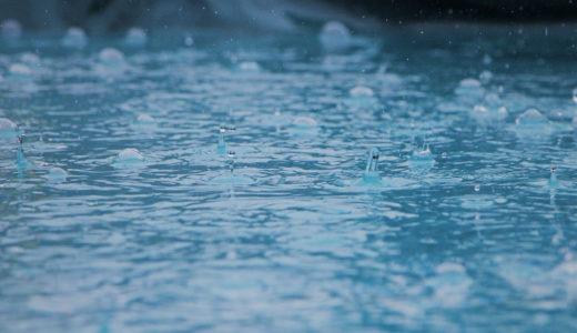 今日は一日中ずーーーっと雨、雨、雨・・・